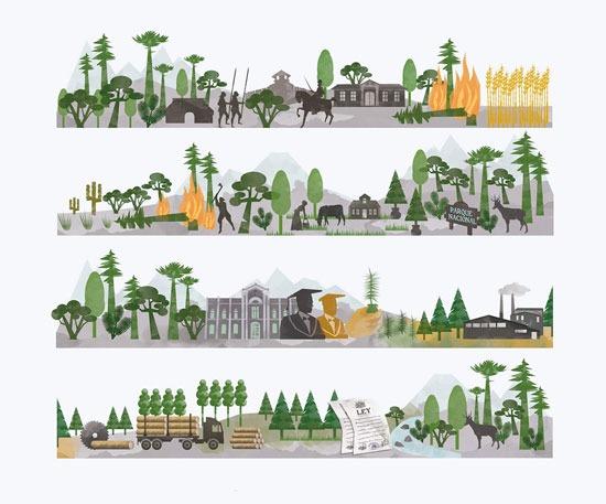 Hitos del desarrollo forestal chileno