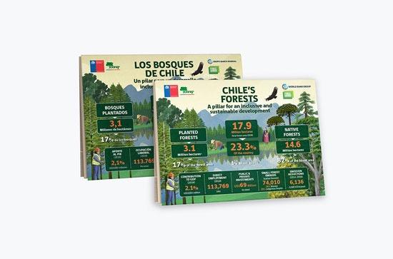 Infografía Los Bosques de Chile