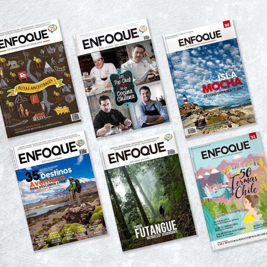 Revista Enfoque